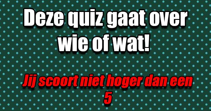 Wie of wat zoeken we?